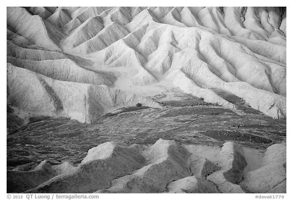 Badlands and wash at dawn, Zabriskie Point. Death Valley National Park (black and white)
