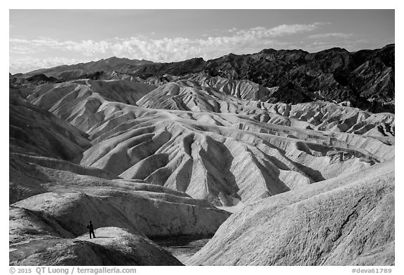 Visitor looking, Zabriskie Point. Death Valley National Park (black and white)