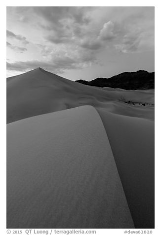 Ibex dunes field at dusk. Death Valley National Park (black and white)