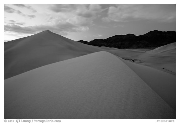 Ibex Sand Dunes and mountains at dusk. Death Valley National Park (black and white)