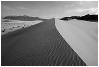 Dune ridge and ripples, Ibex Dunes. Death Valley National Park ( black and white)
