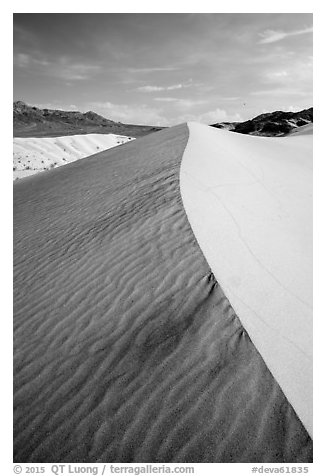 Ibex Sand Dune ridge and ripples. Death Valley National Park (black and white)