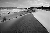 Ibex Dunes and Ibex Hills. Death Valley National Park ( black and white)