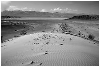 Ibex Dunes and valley. Death Valley National Park ( black and white)
