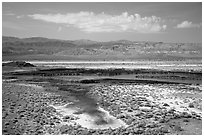 Wetlands, Saragota Spring. Death Valley National Park ( black and white)