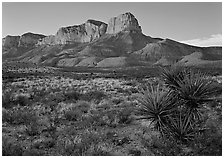El capitan from Williams Ranch road, sunset. Guadalupe Mountains National Park ( black and white)