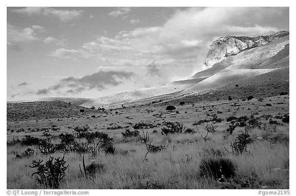 Flats and El Capitan, early morning. Guadalupe Mountains National Park (black and white)