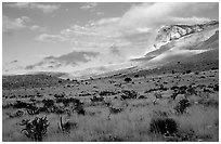 Flats and El Capitan, early morning. Guadalupe Mountains National Park ( black and white)