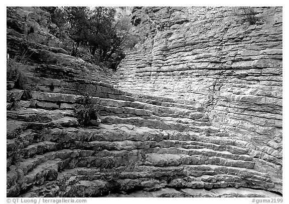 Hiker's Staircase, Pine Spring Canyon. Guadalupe Mountains National Park (black and white)