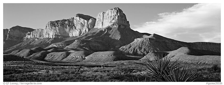 El Capitan cliffs in late afternoon. Guadalupe Mountains National Park (black and white)