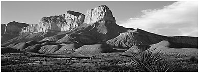 El Capitan cliffs in late afternoon. Guadalupe Mountains National Park (Panoramic black and white)