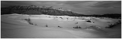 Salt Basin gypsum dunes and Guadalupe range. Guadalupe Mountains National Park (Panoramic black and white)
