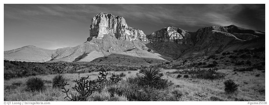 El Capitan rising above desert flats. Guadalupe Mountains National Park (black and white)