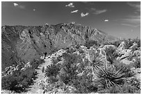 Hiker on trail above Pine Spring Canyon. Guadalupe Mountains National Park, Texas, USA. (black and white)