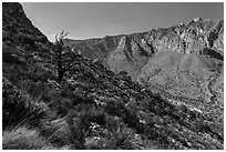 Slopes with shrubs and Hunter Peak. Guadalupe Mountains National Park ( black and white)