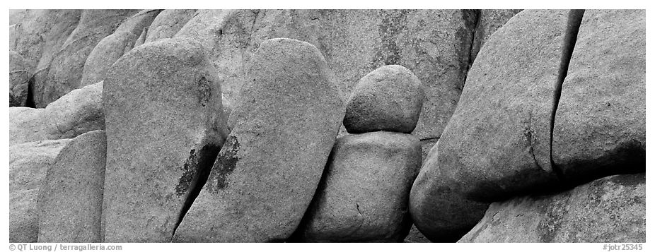 Stacked boulders. Joshua Tree National Park (black and white)