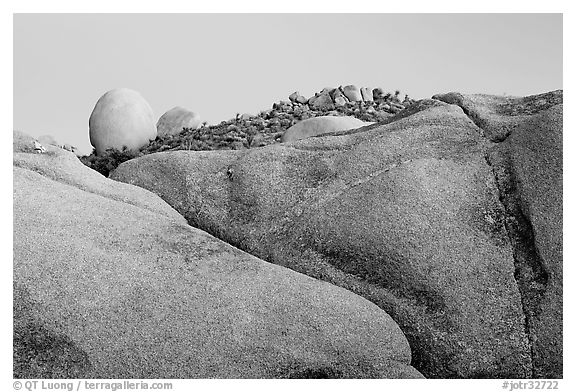 Rocks at dusk, Jumbo Rocks. Joshua Tree National Park (black and white)