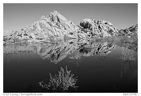 Rock formations reflected in Barker Dam Pond, morning. Joshua Tree National Park (black and white)