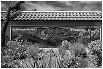 Desert plants and mural, Oasis Visitor Center. Joshua Tree National Park ( black and white)