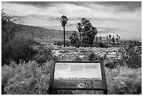 Interpretive sign, Oasis de Mara. Joshua Tree National Park ( black and white)