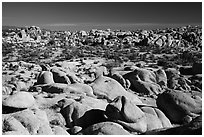 Landscape of rocks, White Tank. Joshua Tree National Park ( black and white)