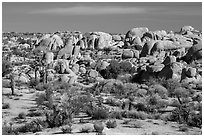 Boulders around White Tank. Joshua Tree National Park ( black and white)