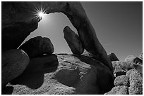 Arch Rock and sunstar. Joshua Tree National Park ( black and white)