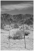 Signage and Pinto Mountains. Joshua Tree National Park ( black and white)
