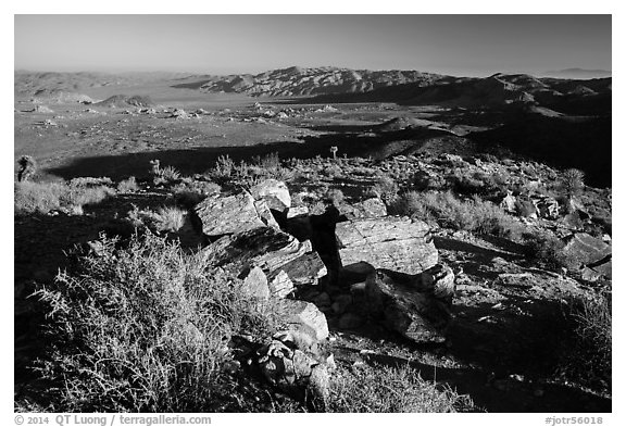 Pleasant Valley from Ryan Mountain. Joshua Tree National Park (black and white)