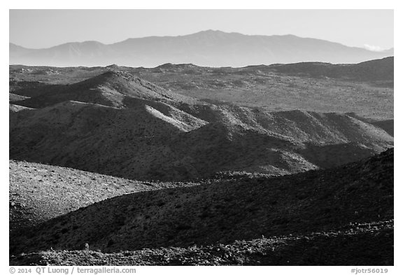 San Bernardino Mountains from Ryan Mountain. Joshua Tree National Park (black and white)