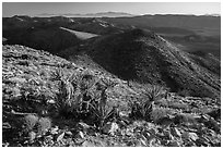 View towards San Bernardino Mountains from Ryan Mountain. Joshua Tree National Park ( black and white)