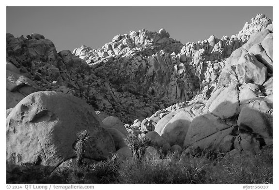 Towering rock formations, Indian Cove. Joshua Tree National Park (black and white)