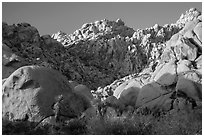 Towering rock formations, Indian Cove. Joshua Tree National Park ( black and white)