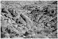 Rocks and desert slope. Joshua Tree National Park ( black and white)