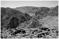 Park visitor looking, Queen Mountains. Joshua Tree National Park ( black and white)