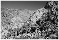 Rocky canyon and 49 Palms Oasis. Joshua Tree National Park ( black and white)