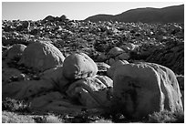 Huge boulders, White Tanks. Joshua Tree National Park ( black and white)
