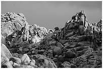 Wonderland of Rocks. Joshua Tree National Park ( black and white)