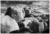 Boulder outcrop. Joshua Tree National Park ( black and white)