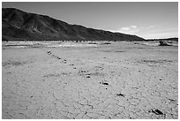 Playa with animal track, Pleasant Valley. Joshua Tree National Park ( black and white)