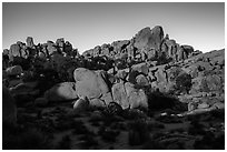 Moonlight, Hidden Valley. Joshua Tree National Park ( black and white)
