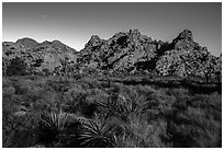 Hidden Valley with light of moonrise. Joshua Tree National Park ( black and white)