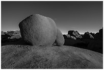 Twin boulders. Joshua Tree National Park ( black and white)