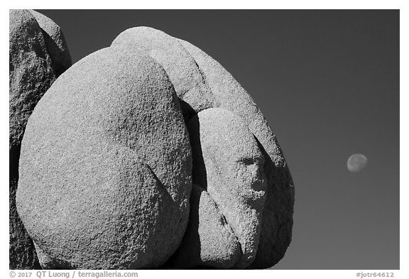 Boulder with sphynx shape and moon. Joshua Tree National Park (black and white)