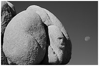 Boulder with sphynx shape and moon. Joshua Tree National Park ( black and white)