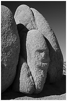 Sphynx-shaped boulder. Joshua Tree National Park ( black and white)