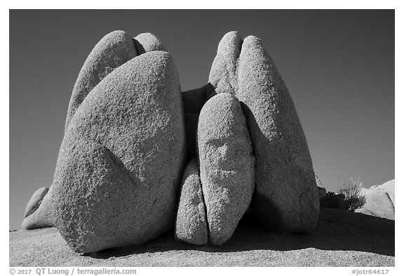 Rocks with Sphynx head. Joshua Tree National Park (black and white)