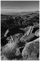 View towards Salton Sea from Mastodon Peak, sunrise. Joshua Tree National Park ( black and white)