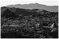 Boulders, ridges, and Eagle Mountain. Joshua Tree National Park ( black and white)