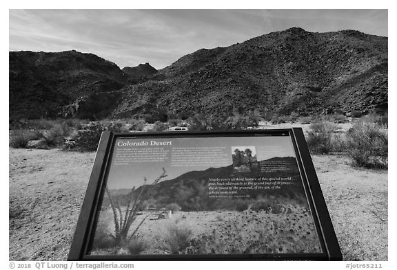 Colorado Desert interpretive sign. Joshua Tree National Park (black and white)